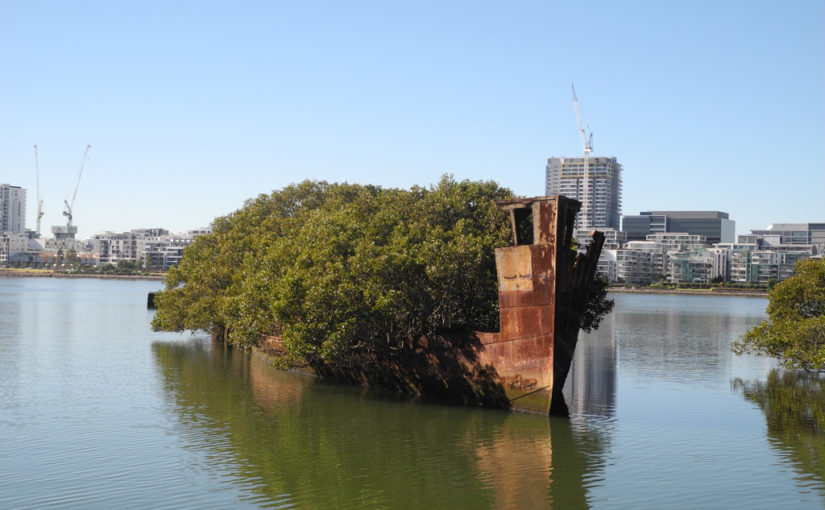 Homebush Bay ship wrecks